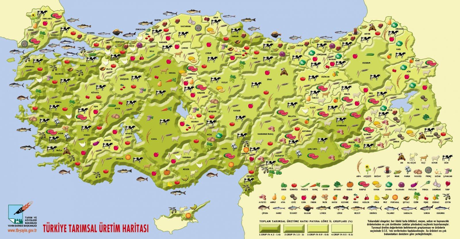 turkiyenin_illere-gore-tarim-urunlari-haritasi